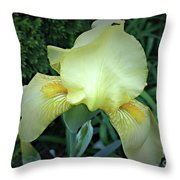 The Dainty Side Of An Iris Throw Pillow