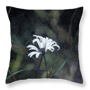 The Daisy Throw Pillow