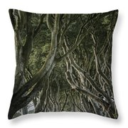The Dark Hedges V Throw Pillow