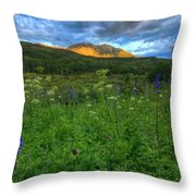 The Dawning Of Majesty Throw Pillow