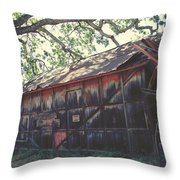 The Day Things Fell Apart Throw Pillow