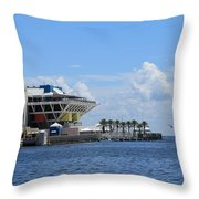 The Days Are Numbered Throw Pillow