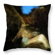 The Delicacy Of A Summer Night Throw Pillow
