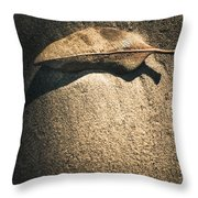 The Desert Burial Throw Pillow