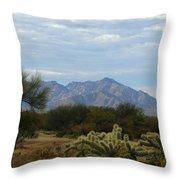 The Desert Landscape Throw Pillow