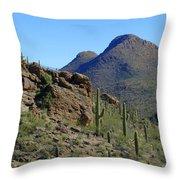 The Desert Mountains Throw Pillow