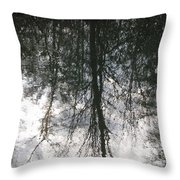 The Devic Pool 1 Throw Pillow