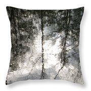 The Devic Pool 2 Throw Pillow