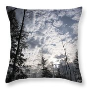 The Devic Pool 3 Throw Pillow