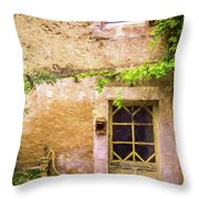 The Doorway To Provence Throw Pillow