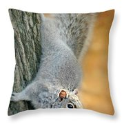 The Down Side Throw Pillow