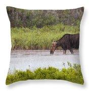 The Downpour Throw Pillow