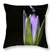 The Dragonfly And The Water Lily  Throw Pillow