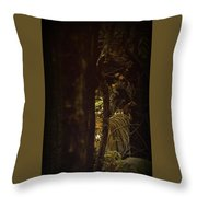 The Dramatic Silence Throw Pillow