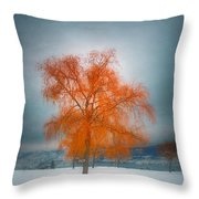 The Dreams Of Winter Throw Pillow