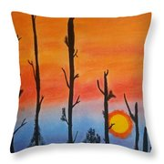 The Dryest Sunset Throw Pillow