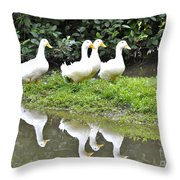 The Duck Gang Throw Pillow