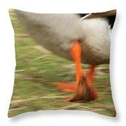 The Duck Strut Throw Pillow