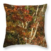 The Dying Leaves' Final Passion Throw Pillow