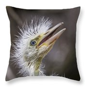 The Eager Great Egret Chick Throw Pillow