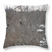 The Eagle Has Landed Throw Pillow