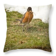 The Early Bird - Robin - Casper Wyoming Throw Pillow