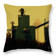 The Earth And All That Is In It Throw Pillow
