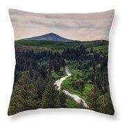 The Elberton View Throw Pillow