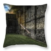 The Eclipse And The Barn Owl Throw Pillow
