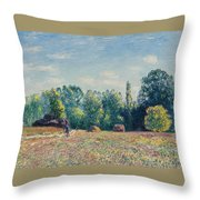The Edge Of The Forest 2 Throw Pillow