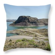 The Elephant At Elephant Butte Lake  Throw Pillow