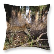The Elusive Leopard Throw Pillow