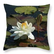The Empress And Attendant Throw Pillow