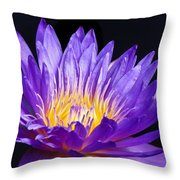 The Enchantress  Throw Pillow by Lori Frisch