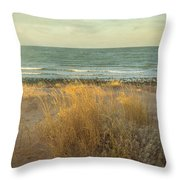 The End Of A Day Throw Pillow