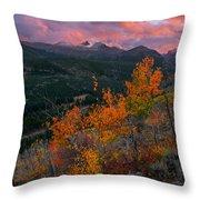 The End Of Autumn - Rocky Mountain National Park Throw Pillow