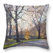 The End Of Fall At Three Sisters Islands Throw Pillow