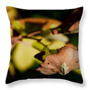 The End Of Fall Throw Pillow