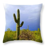 The End Of The Storm Throw Pillow