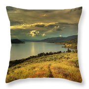 The Evening Calm Throw Pillow