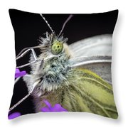 The Eye Of The Green-veined Butterfly. Throw Pillow