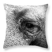 The Eye That Never Forgets Throw Pillow