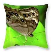 The Eyes Are Watching At You Throw Pillow
