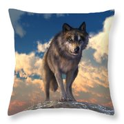 The Eyes Of Winter Throw Pillow