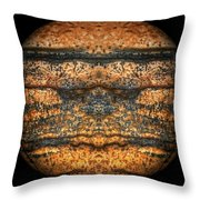 The Face Of Geology Throw Pillow