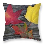 The Fallen Leaves Of Autumn Throw Pillow