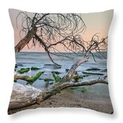 The Fallen Tree Throw Pillow