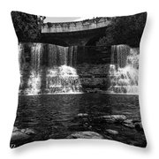 The Falls In Black And White Throw Pillow
