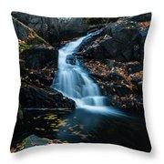 The Falls Of Black Creek In Autumn II Throw Pillow