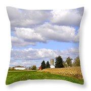 The Farmers Fields Throw Pillow